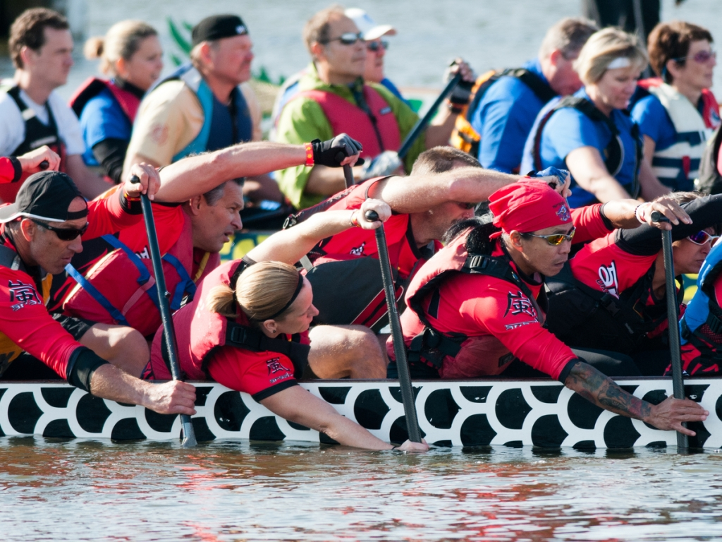 The Dragon Boat Races